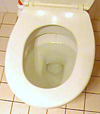 Blocked toilet in Gungahlin